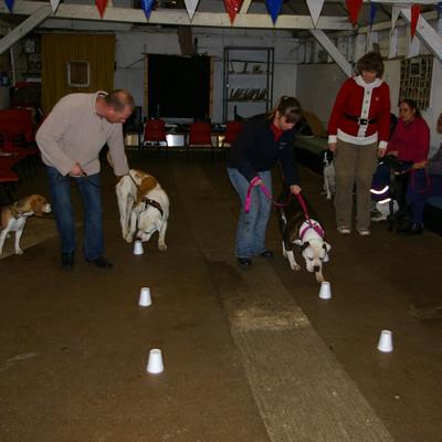 Laleham Dog Training
